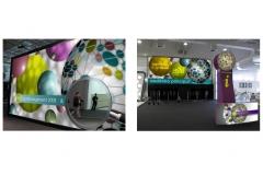 Apresentação Inez Oliveira exhibition design 2016 07