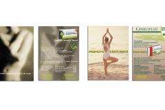 Apresentação Inez Oliveira graphic design 2016 36 copy