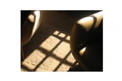 JPG portfolio Photos 45